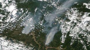 Płoną lasy. Blisko 40 tysięcy osób musiało uciekać przed ogniem
