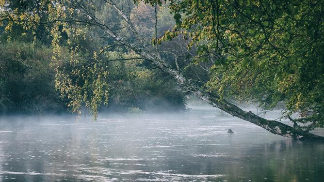 Wysoki poziom wody w Bałtyku. Możliwe przekroczenia stanów ostrzegawczych